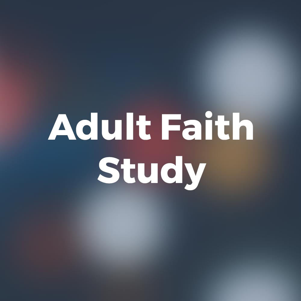 Adult Faith Study